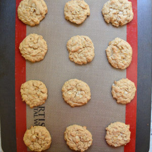 oatmeal peanut butter cookies-12