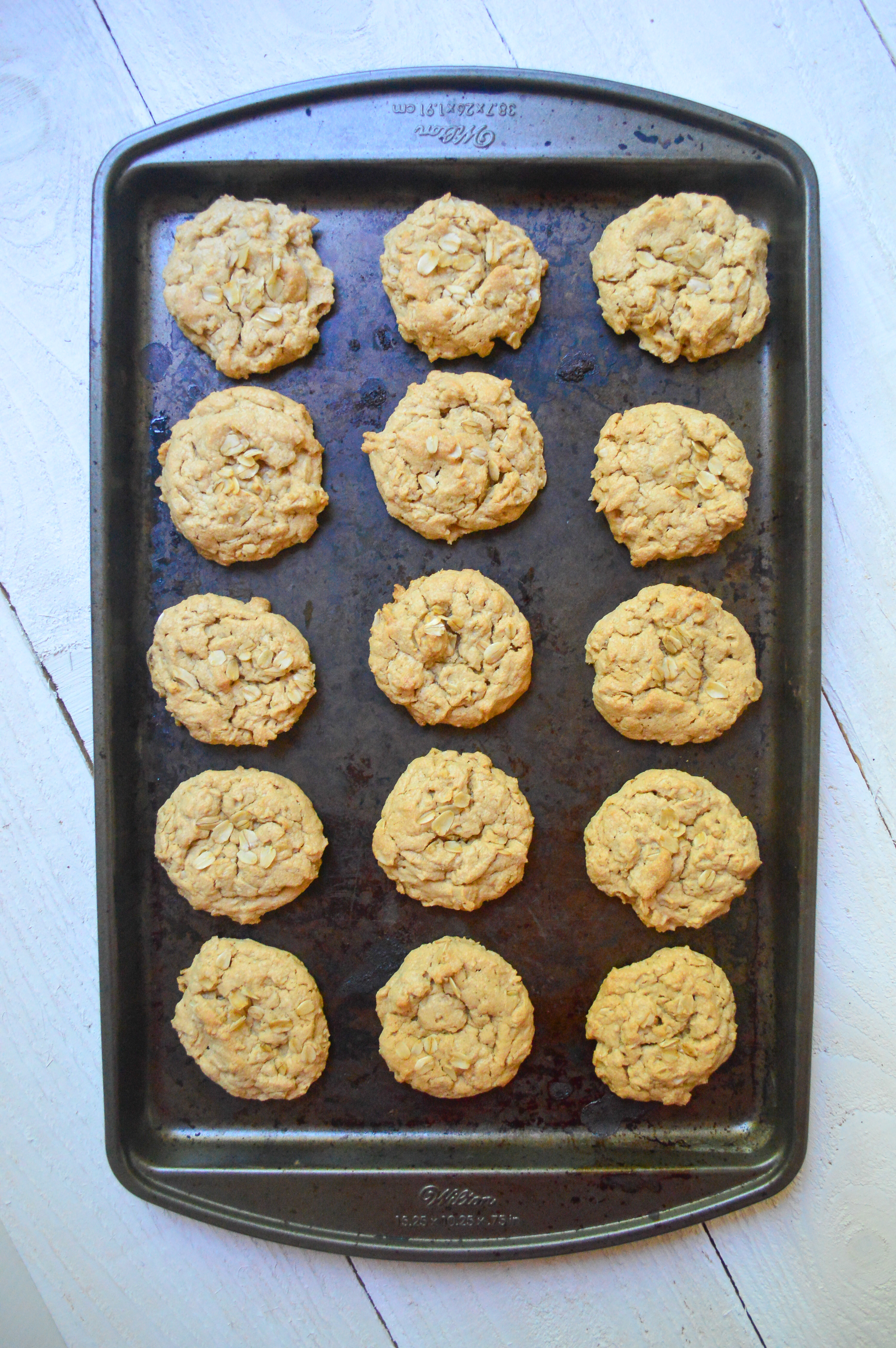 oatmeal peanut butter cookies-14
